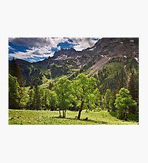 Alpine Light Photographic Print