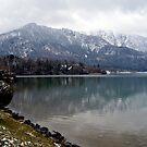 Lake Kochelsee in Winter by Daidalos