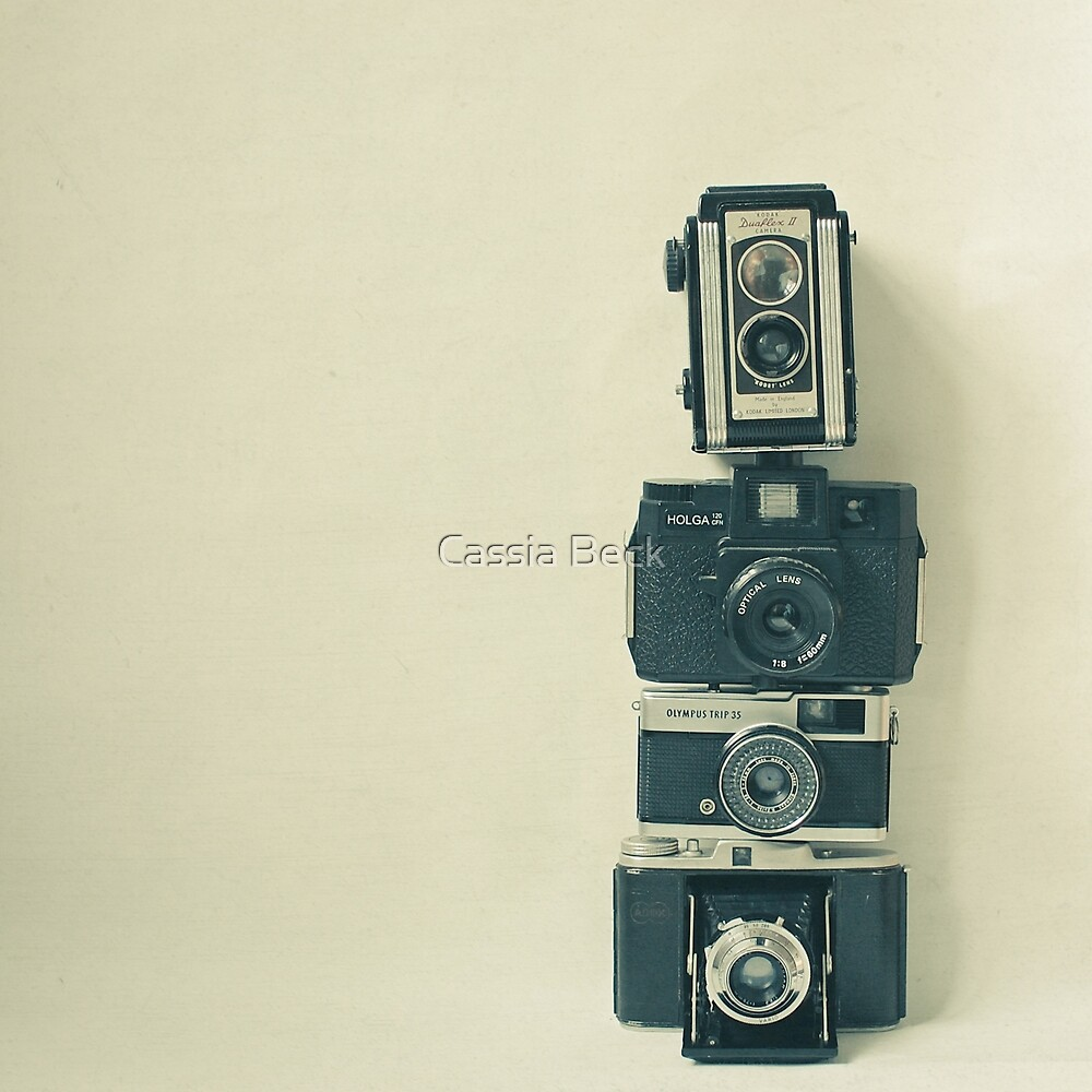 Camera Love by Cassia Beck