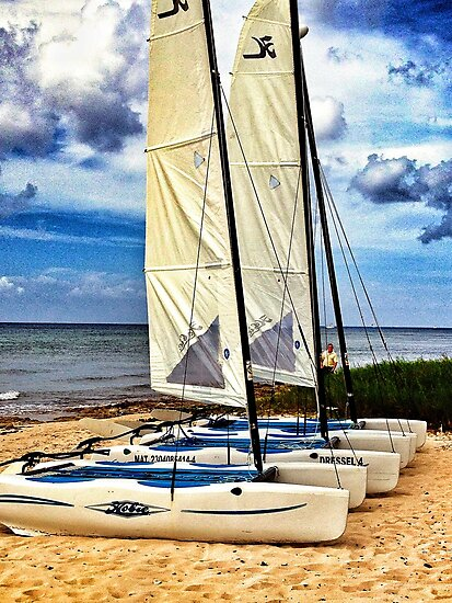 Cozumel, Mexico by fauselr