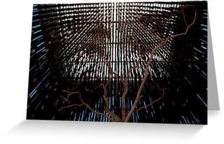 tree of knowledge by Bronwen Hyde
