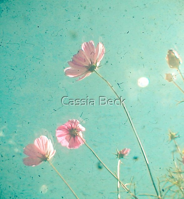 Meadow by Cassia Beck