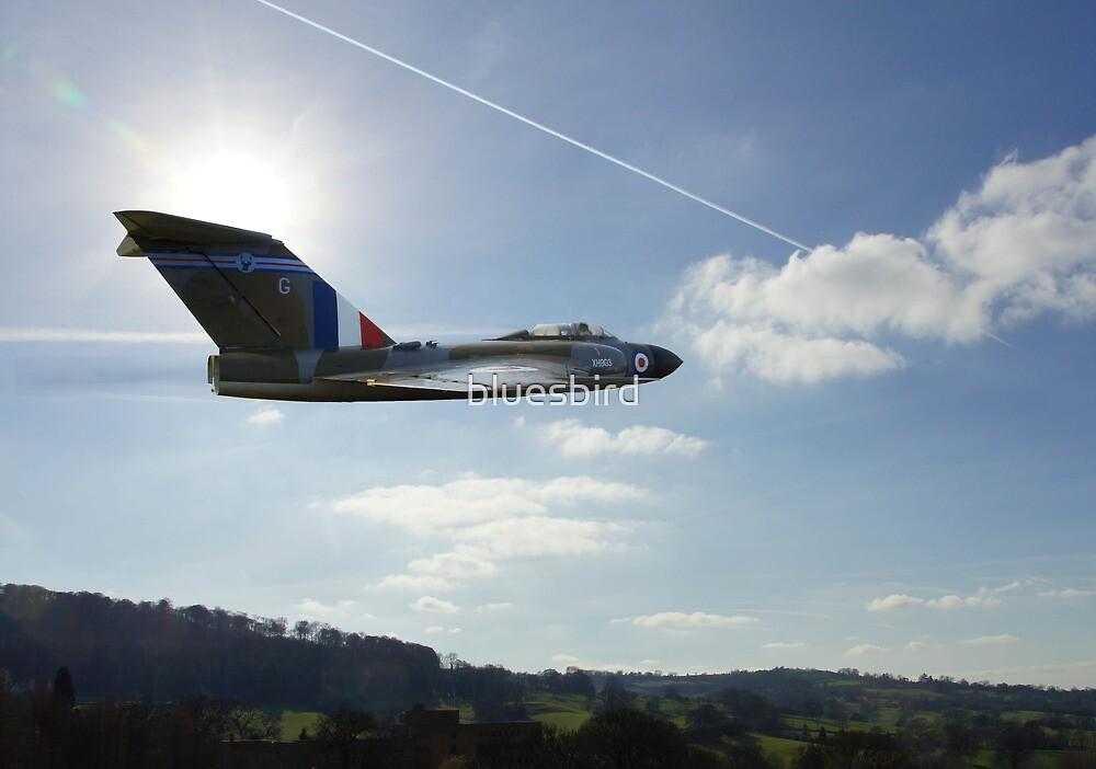 Flight of Fancy by bluesbird