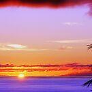 Vivid Sunset by reneecettie