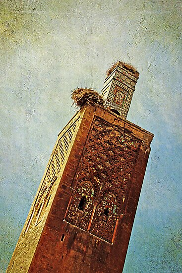 Ancient Tower by Robyn Carter