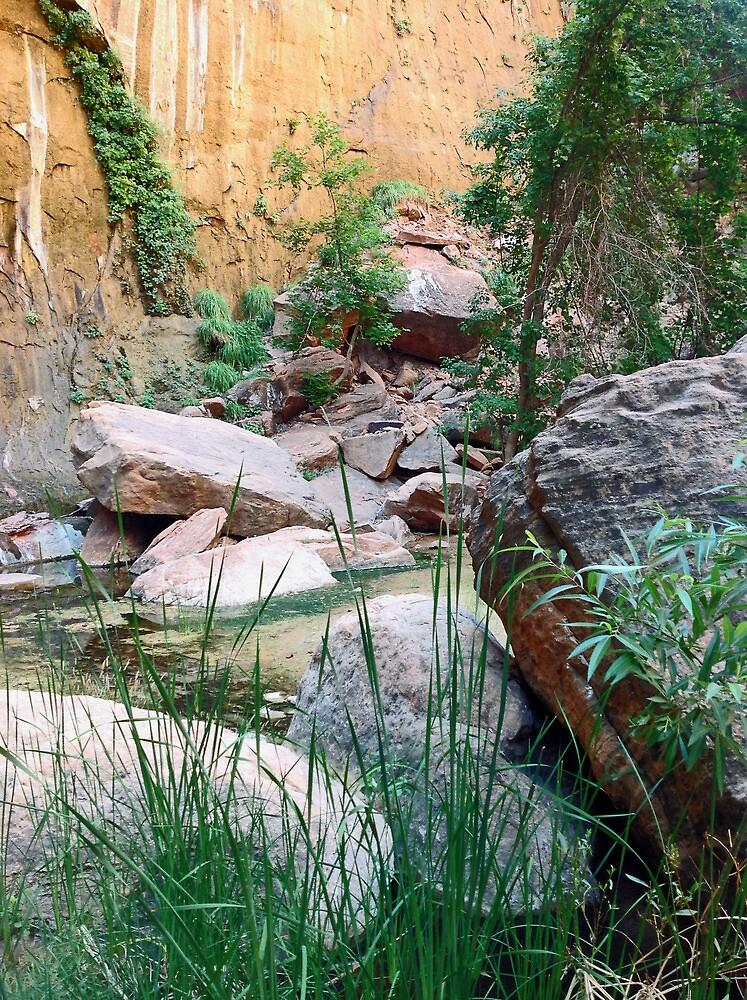 Still Water Zen by JPMcKim