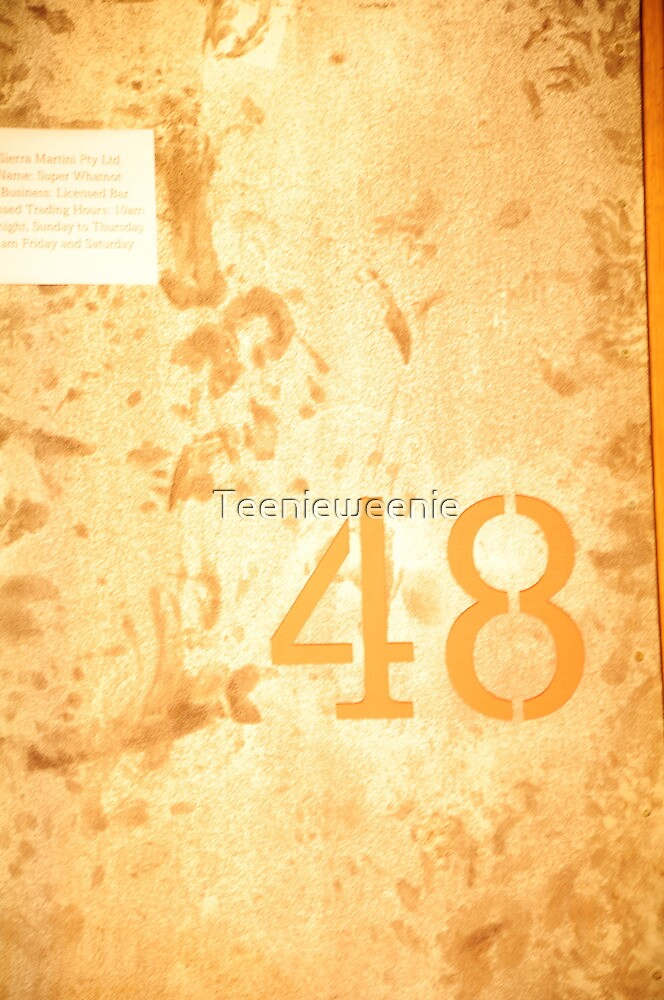 no. 48 urban backstreet by Teenieweenie