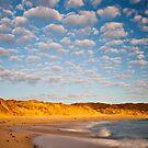 Back beach beauty by Stephanie Johnson