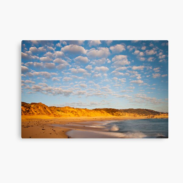 Back beach beauty Metal Print