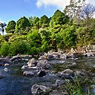 Ohinemuri River, Karangahake Gorge by Dilshara Hill