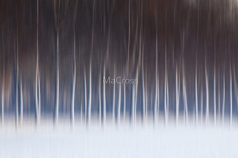 Winter Lament by Martina Cross