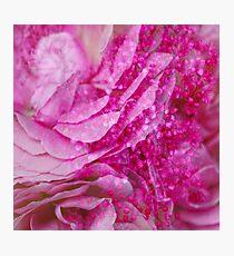 Summer Melt Photographic Print