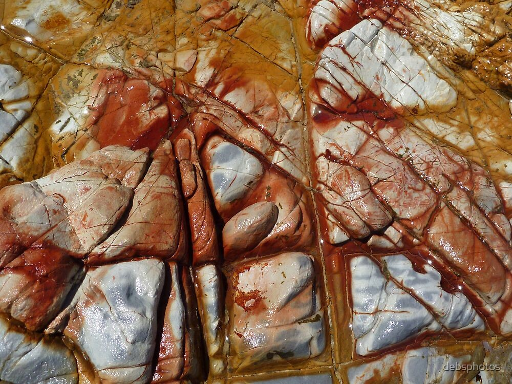 Bleeding Rocks... by debsphotos