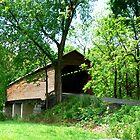 Meems Bottom Covered Bridge_Virginia by Hope Ledebur