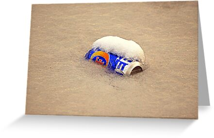 A Cold One ? by Stan Owen
