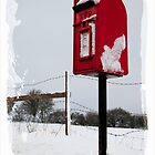 The Postbox in the snow by Jeff  Wilson
