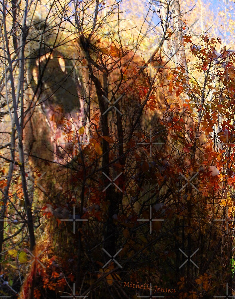 Bear  by WishesandWhims