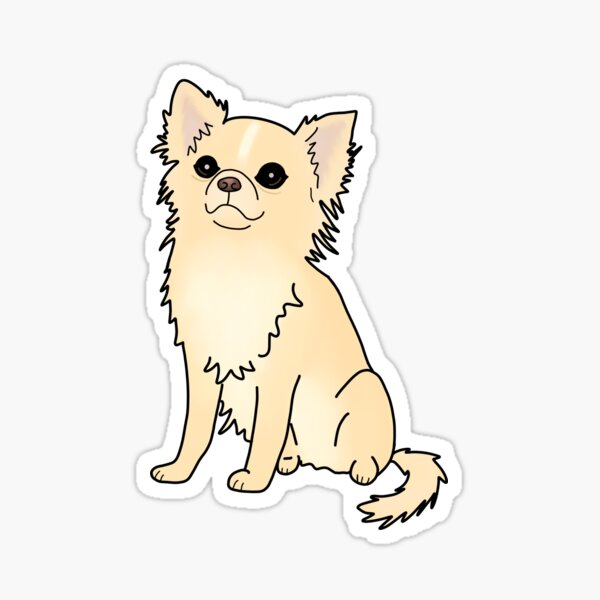 Long haired chihuahua  Sticker
