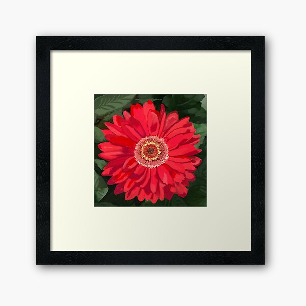 Red Daisy for Fame and Hallways Framed Art Print