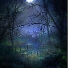 Moonlit Walk by Kim Slater
