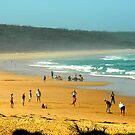 True Blue, beach cricket the flipper  by Glen Johnson