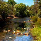 Waters Edge Bright by Glen Johnson