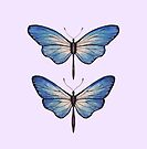 Blue Butterflies by samclaire