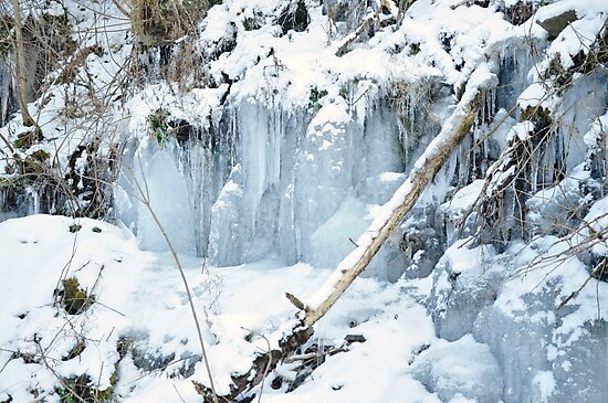 ICE by Penny Rinker