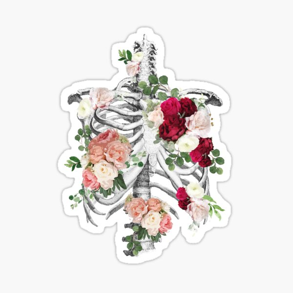 Anatomy, ribcage, rib cage,roses bloom spring Sticker