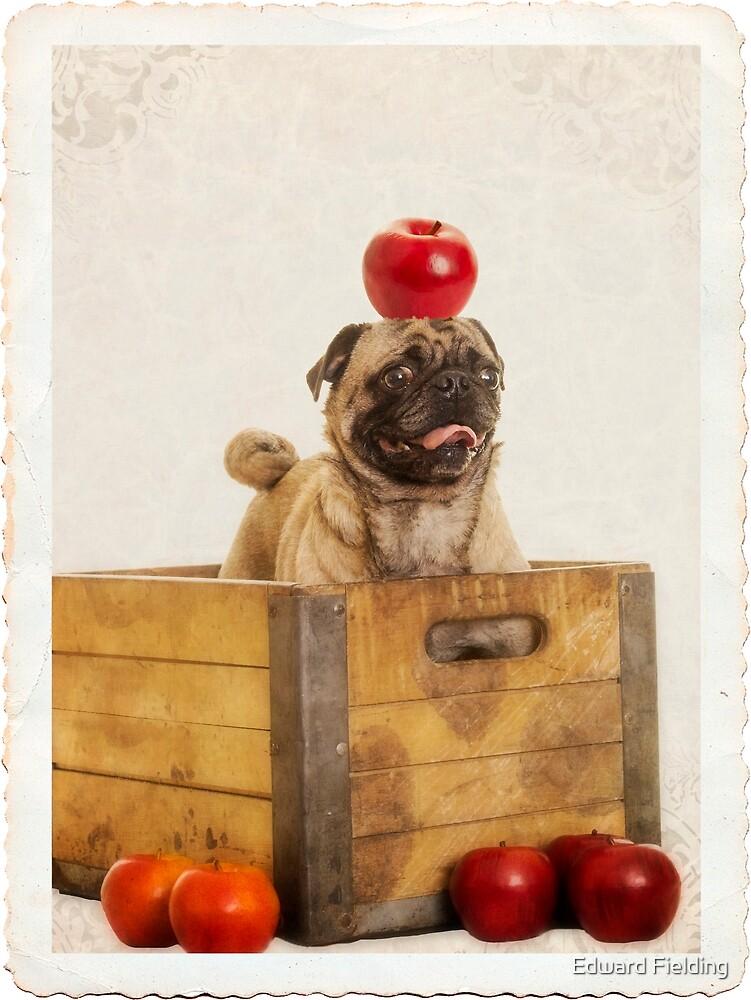 An Apple a Day by Edward Fielding