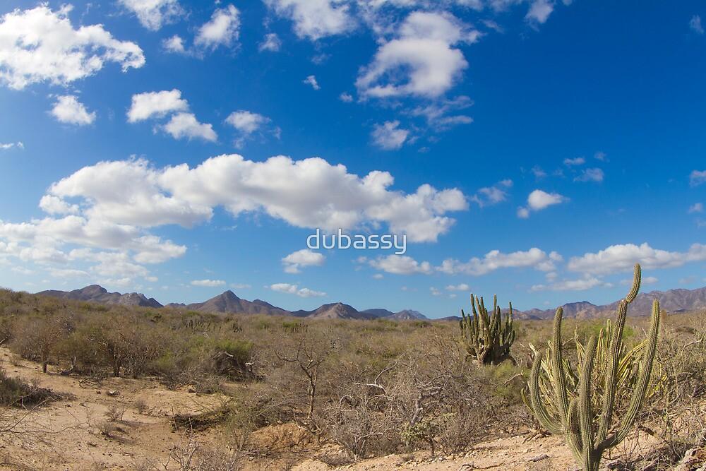 desert at baja california by dubassy
