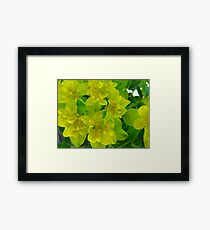 Yellow levity Framed Print