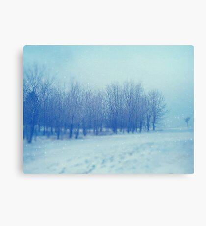 Blue Woodland Canvas Print
