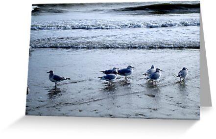 R & R at the Beach  - Calendar Image    ^ by ctheworld