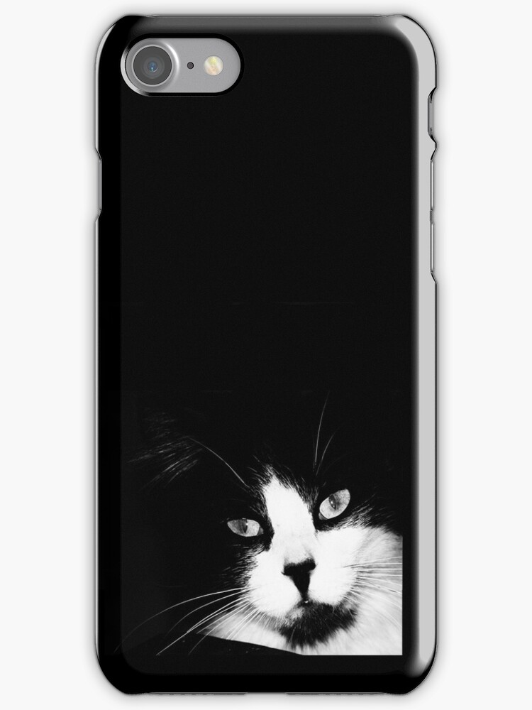 Jazzy Cat Case by Ronald Hannah