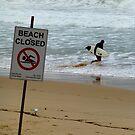Beach Closed by jlv-