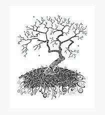 A Doodle Planted Photographic Print