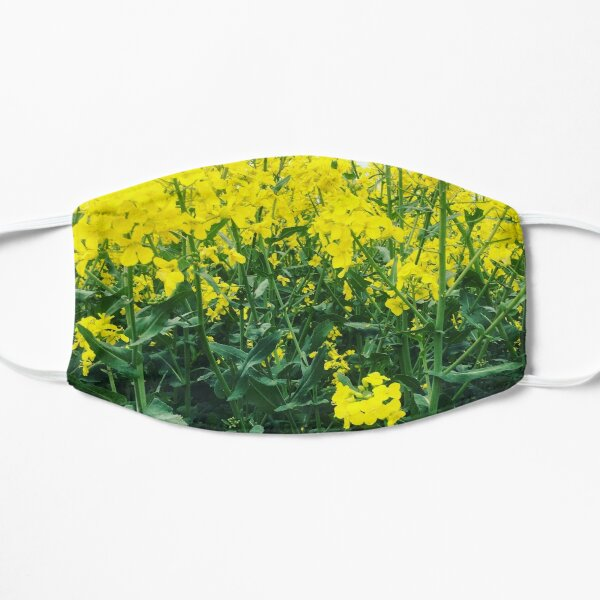 Natural English Rapeseed Flowers Plant Mask