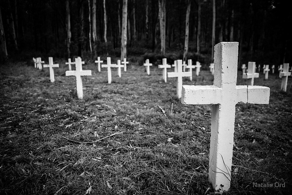 Glen Wills Cemetery by Natalie Ord
