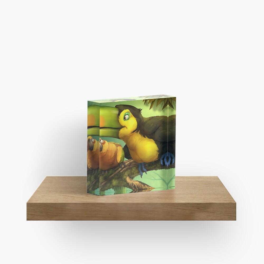 Toucan and Sun Conures! Acrylic Block