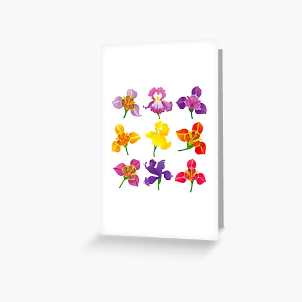 Tigridia & Iris Greeting Card