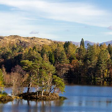 'The ever beautiful, Tarn Howes' by marcogolfo