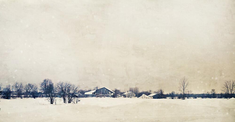 Winter In A Farm by sandra arduini