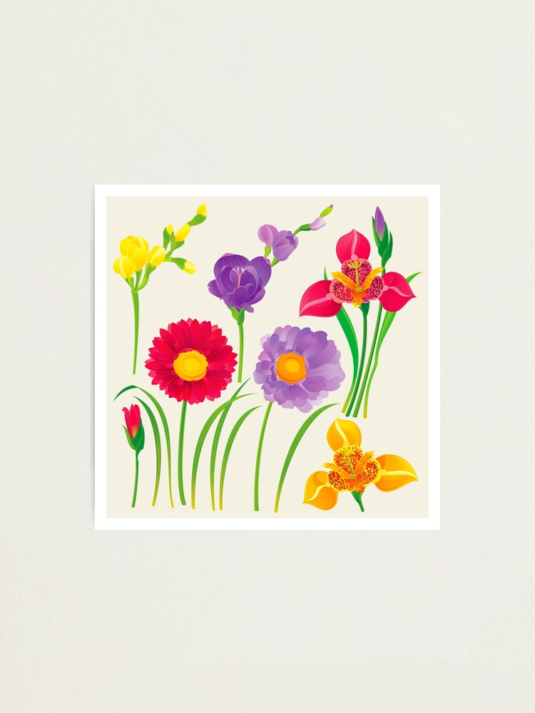 Alternate view of Spring Flowers Photographic Print