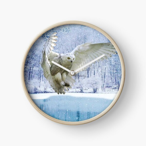 Observe and reflect, and become a little wiser everyday ! Clock