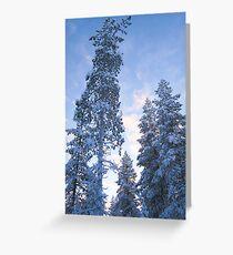 Lapland Greeting Card