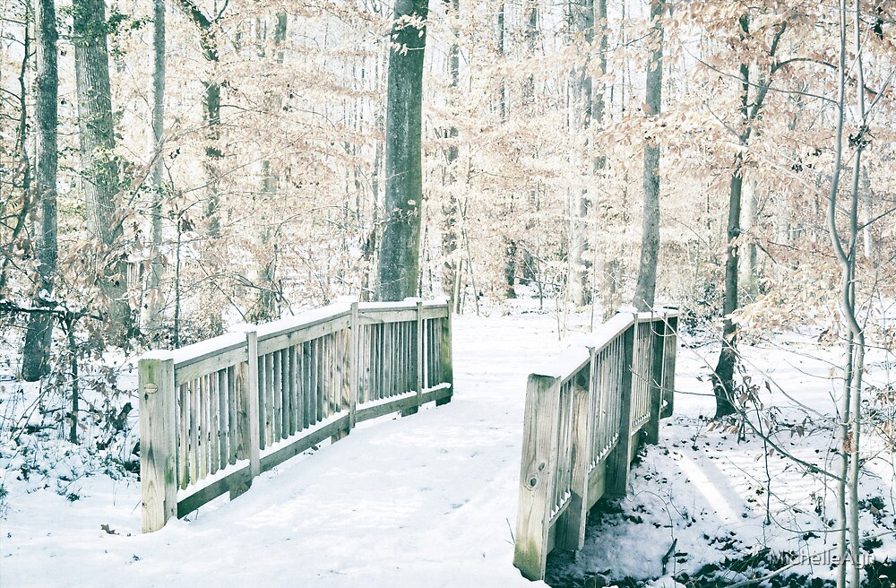 A Path in the Snow by MichelleAyn