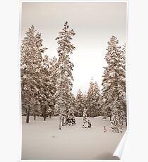 Lapland Poster