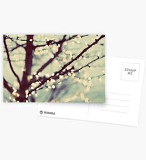 tree of lights Postcards