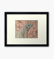 Sarcastic Scales Framed Print